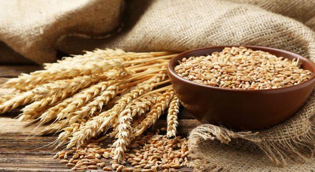 Buğday Fiyatında Rekor Artış